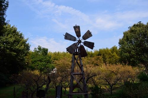_風車DSC_1990