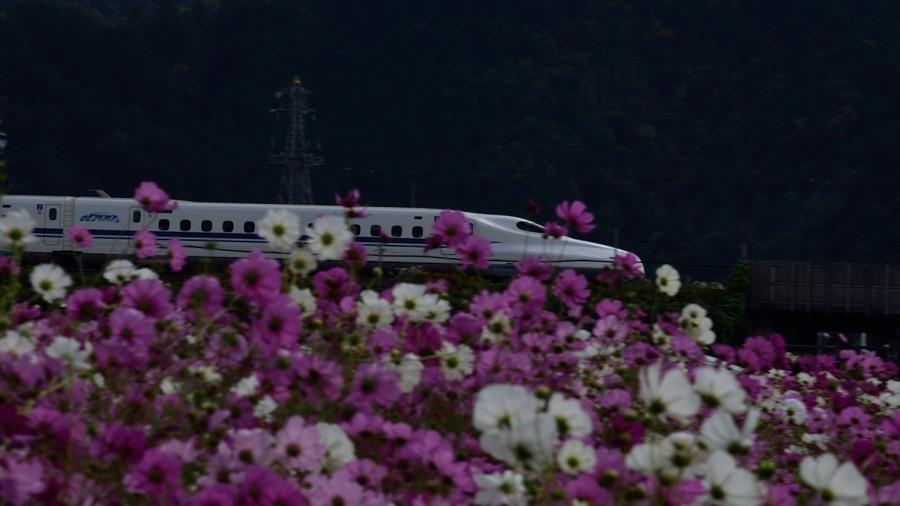 _新幹線DSC_0343