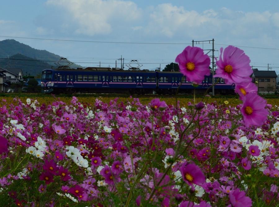 _新幹線DSC_0258