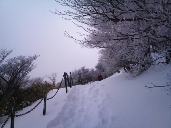 20110116-DSC_0129.jpg