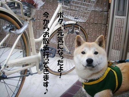 福と自転車