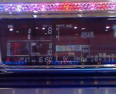 100504海桜ライト01