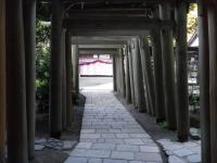 鎌倉散策35