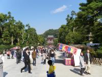鎌倉散策78