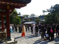鎌倉散策8