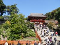 鎌倉散策81