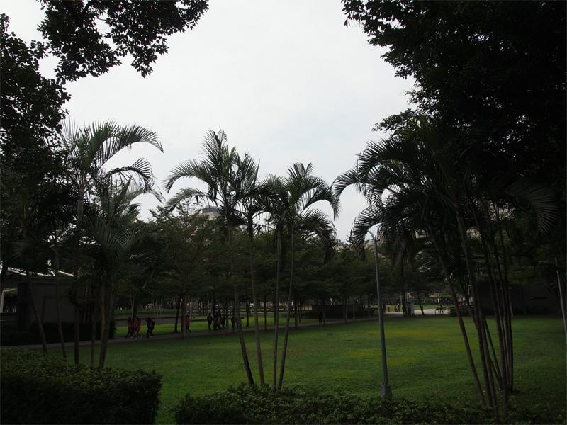 2013012209.jpg