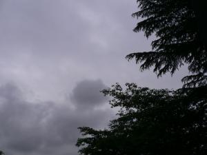 音文フリマ空0627