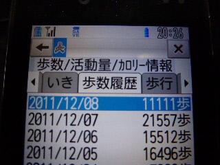 P1010088(1).jpg