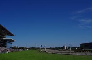 競馬場には青空が似合うっ!