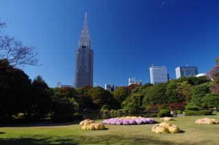 見よ、これが新宿だ