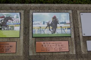 歴史に名を刻んだ馬
