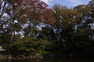 秋色に染まり・・・はまだ早い?