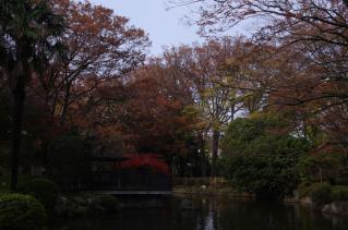 日本庭園は紅葉スポットの穴場。