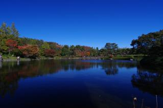 日本庭園、再び