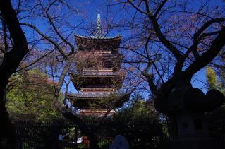 上野東照宮から眺める