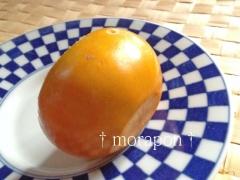 141016 小さな柿の「種」の取除き方-2