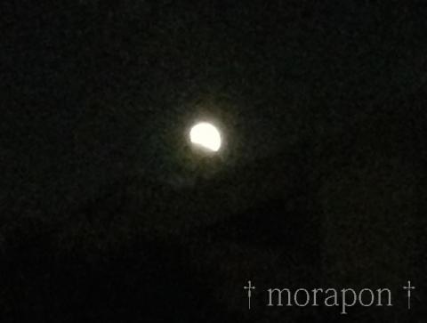 141008 皆既月食-3