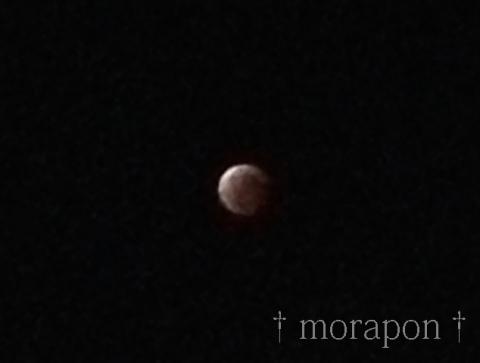 141008 皆既月食-4