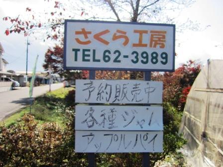 sakurakoubou.jpg