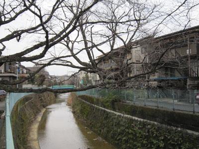 kenjinoie_1_20120226