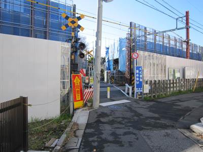 syaku4gou_2_20121216