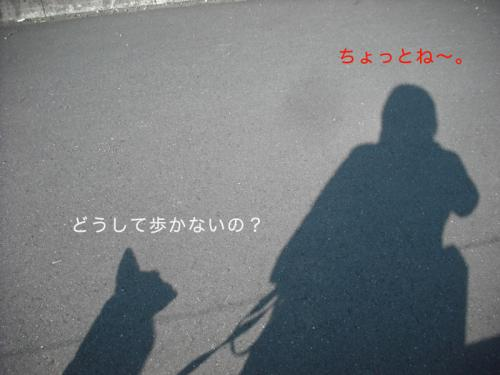 駅伝5のコピー