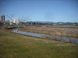 春の散歩15