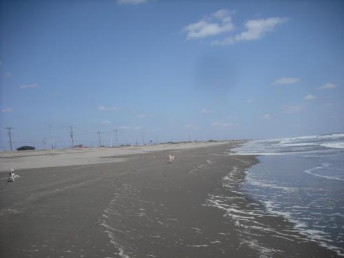 九十九里浜4