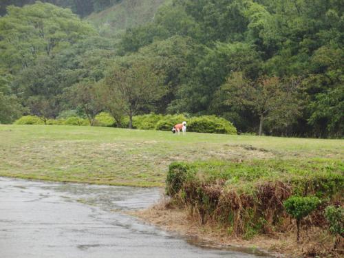 台風の朝4