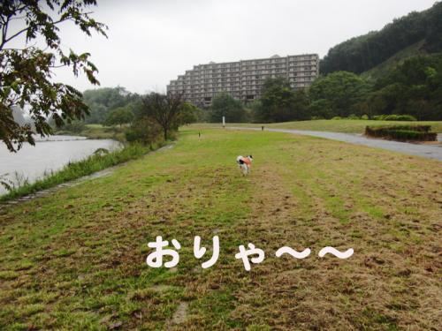 台風の朝3のコピー