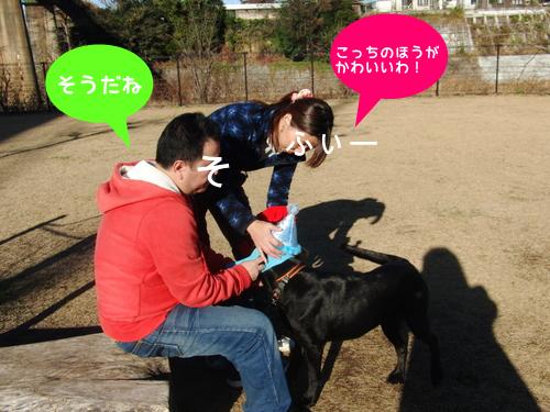 CIMG5926-1.jpg
