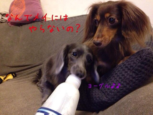 20141029201325ea1.jpg