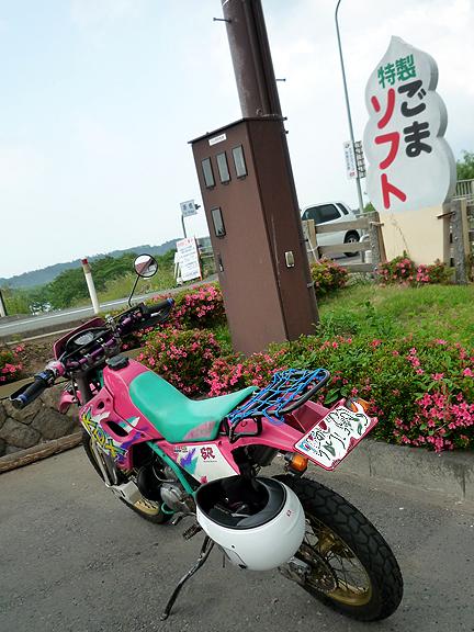 20110610_3.jpg