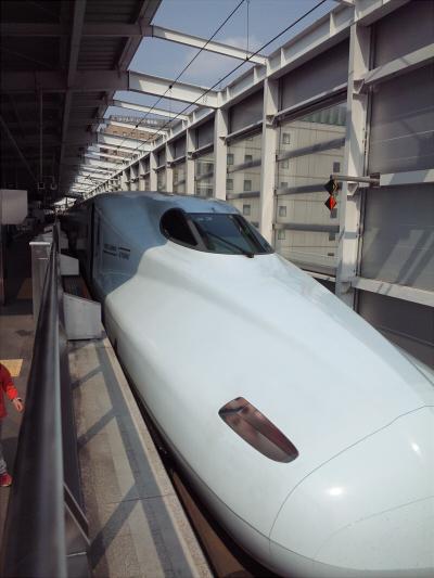 新幹線333