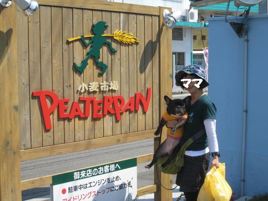 2010焼津 085[1]