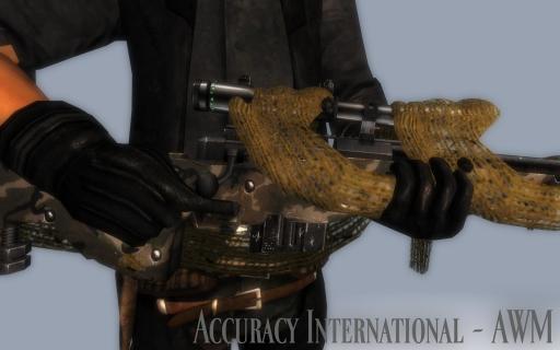 Accuracy-International---AWM_001.jpg