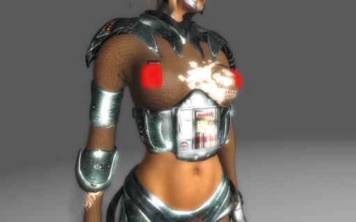 BEWARE-OF-GIRL-Edition-Direwolf-ACA-Armor-_003.jpg