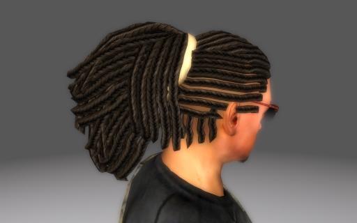 Braided-Redguard-Hair-for-Fallout-3_005.jpg