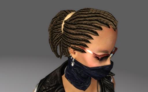 Braided-Redguard-Hair-for-Fallout-3_006.jpg
