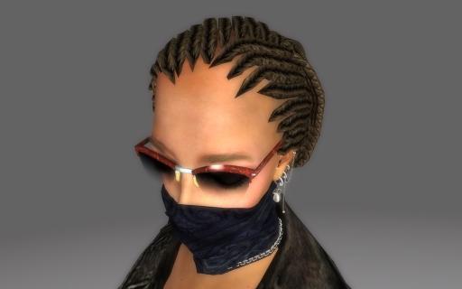 Braided-Redguard-Hair-for-Fallout-3_007.jpg