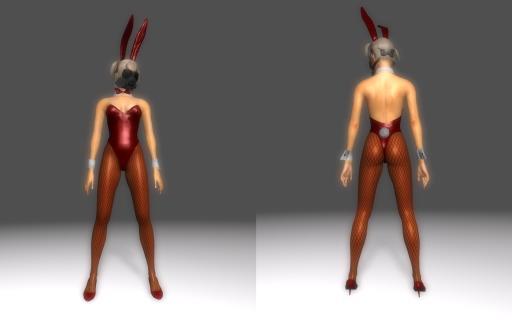 Bunny-Suit-for-DType3_002.jpg