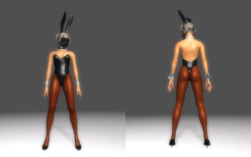 Bunny-Suit-for-DType3_007.jpg
