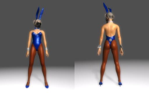 Bunny-Suit-for-DType3_008.jpg
