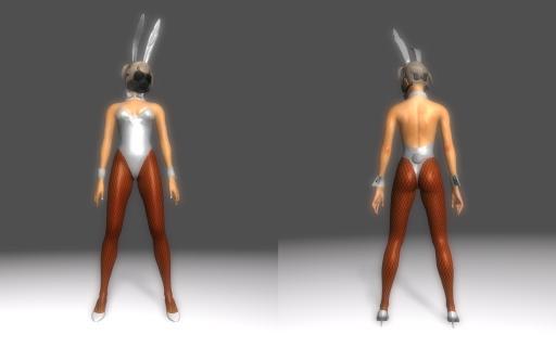 Bunny-Suit-for-DType3_009.jpg