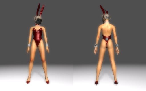 Bunny-Suit-for-DType3_010.jpg