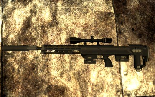 DSR-1-sniper-rifle_007.jpg