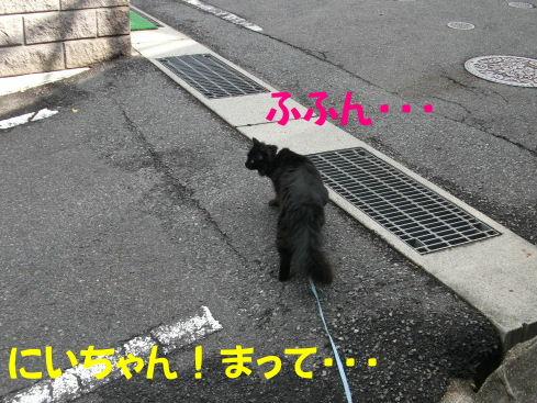 2011_05010042.jpg
