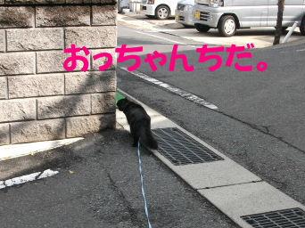 2011_05010045.jpg