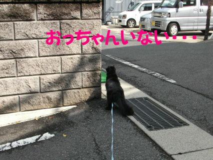 2011_05010046.jpg